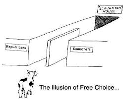 Societatea globală și iluzia alegerii deștepte